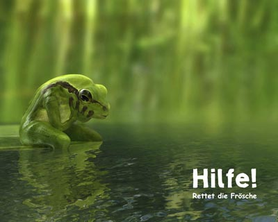 3D Frog, 3D Frosch, Werbeagentur Dülmen, Greenmamba-Studios, virtuelle Fotografie, Münster, Düsseldorf, NRW