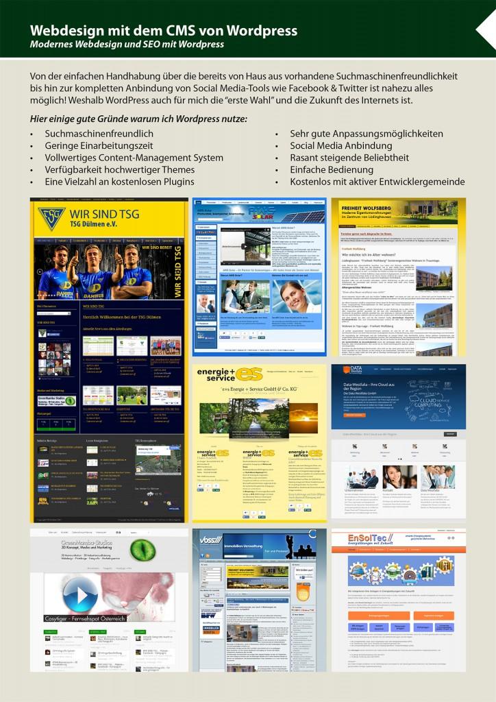 GreenMamba_Studios_Webdesign